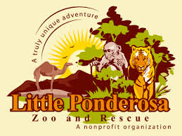 Little Ponderosa announces plans