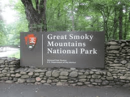 Tree removal in GSMNP will cause temporary, single-lane closures on Spur