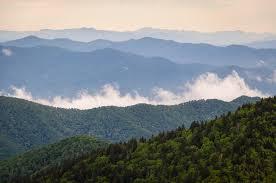 GSMNP seeking volunteers for trail work
